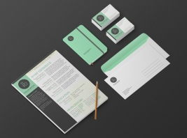 Branding concept for Taylor Brown