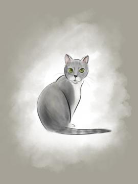 A simple digital illustration of a client's adorable pet cat.