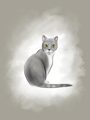 A simple digital illustration of a client's adorable pet cat.